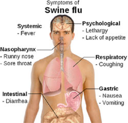 symtoms of swine flu